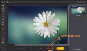 How to remove logo from edited photos